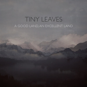 tiny-leaves-a-good-land-an-excellent-land